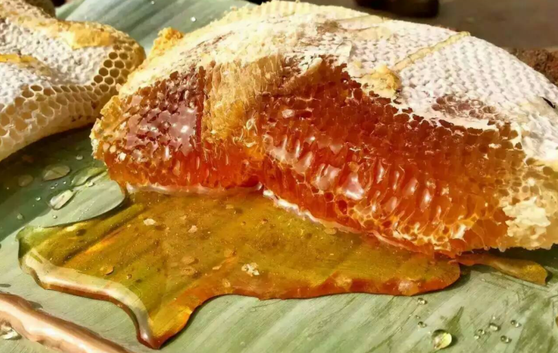 野生蜂蜜有什么好处和作用?版纳云甄蜂蜜告诉你